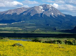Colorado Mountain in June