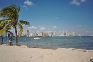Miami Skyline and Beach